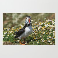 puffin Area & Throw Rugs featuring Packing Puffin by Julie Hoddinott