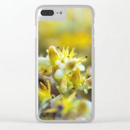 Yellow Sedum Clear iPhone Case