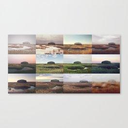 the clump through the seasons Canvas Print