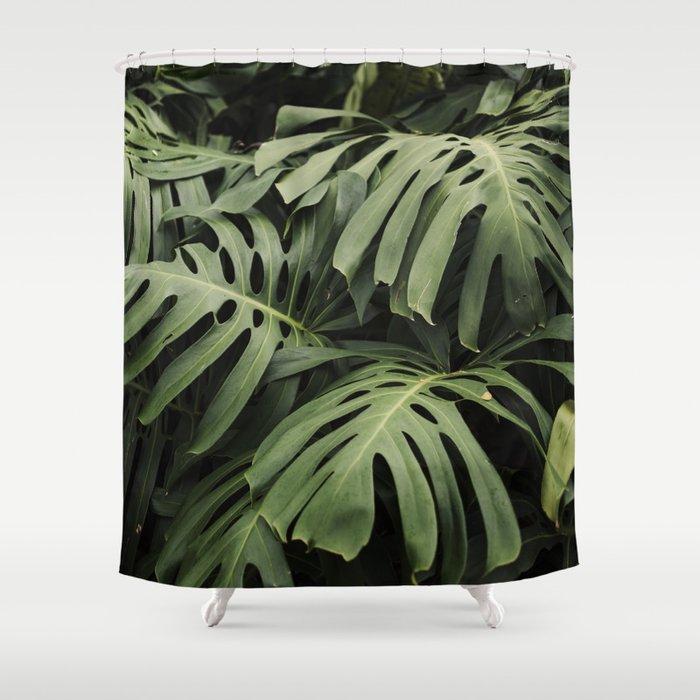 Botanical Dreams Shower Curtain
