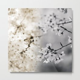Assorted Cherry Blossoms in Muted Tones Metal Print
