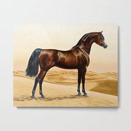 Arabian Horse - William Barraud Metal Print