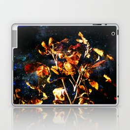 Fallen Laptop & iPad Skin