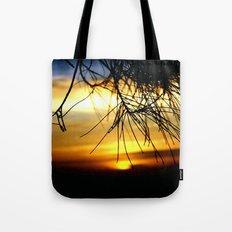 Sunset between Norfolk pine Needles Tote Bag