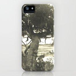 Marsh Landscape iPhone Case