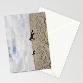 San Juan Horse Run Stationery Cards