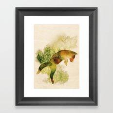 Spring Fox Framed Art Print