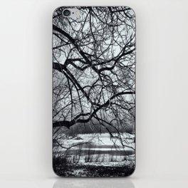Mystical Day iPhone Skin