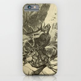 Vintage Print - Animals in Action (1901) - The Monarchs of the Glens iPhone Case