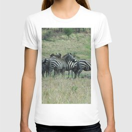 Wild Zebras Grazing, Omo river valley, Ethiopia, Africa T-shirt