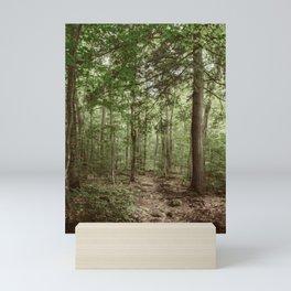 Forest Trail Mini Art Print