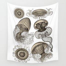 Ernst Haeckel Jellyfish Leptomedusae Wenge Wall Tapestry