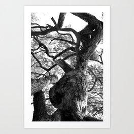 beyond the knot Art Print