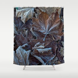 Leaves of the plane trees in winter Shower Curtain