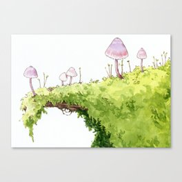 Mushrooms and Moss Canvas Print