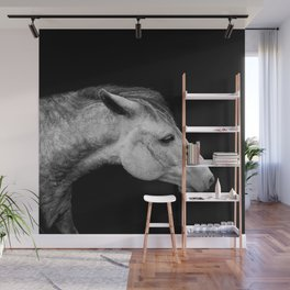Casper | Horse Photography | Animal Art | Minimalism | Nature | black-and-white Wall Mural