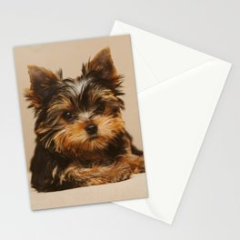 A Yorkie Puppy and a Polaroid Land Camera Stationery Cards