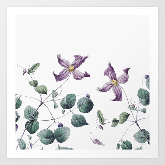 Vintage botanic II Art Print