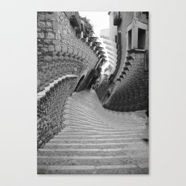Twisty Canvas Print