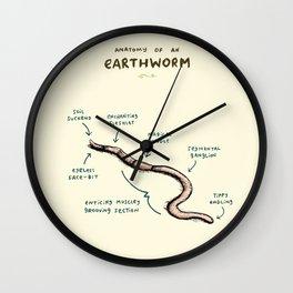 Anatomy of an Earthworm Wall Clock