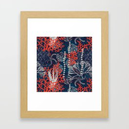 Corals and Starfish Framed Art Print
