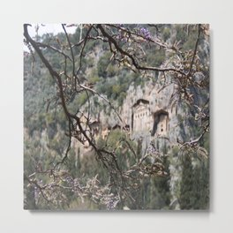 Wisteria Buds Surrounding the Lycian Tombs Dalyan Metal Print