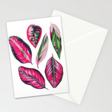 Calathea pink leaves Stationery Cards