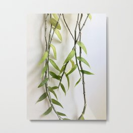 Orchid Vines Metal Print