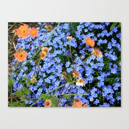 Blue, Orange, and Green Canvas Print