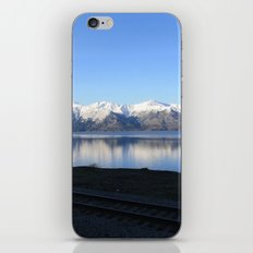 The Alaskan Railroad iPhone & iPod Skin