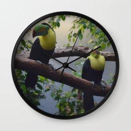 National Aviary - Pittsburgh - Keel Billed Toucan 2 Wall Clock