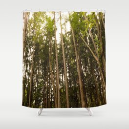 The Tall Trees Shower Curtain