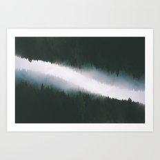 Forest Reflections V Art Print
