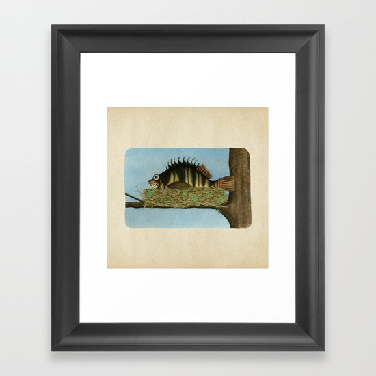 Hawkfish Framed Art Print