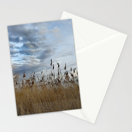 Sky Grasses Lake Landscape Painting Oil Painting Stationery Cards