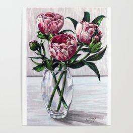 Peonies in a vase marers art Poster
