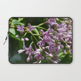 Syringa vulgaris Laptop Sleeve