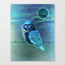 The Owl in the Paint Chip Canvas Print