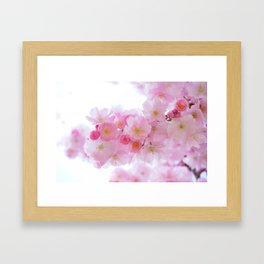 Japanese Cherry Trees Flowers Framed Art Print