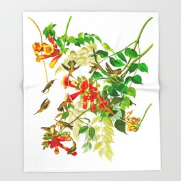 Ruby-throated Humming Bird Throw Blanket