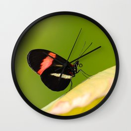 Butterfly - Climbing the hill Wall Clock