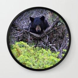 Momma bear in Jasper National Park, Canada Wall Clock
