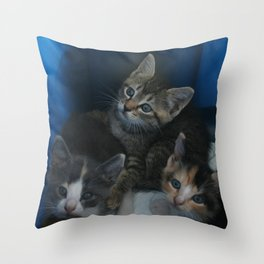 1, 2 & 3 of 8 DPG150830a Throw Pillow
