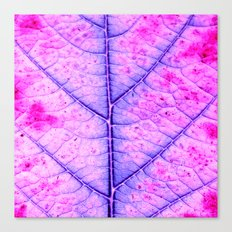leaf abstract IV Canvas Print