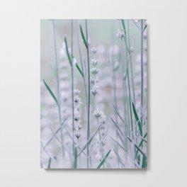 White Lavender Metal Print