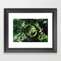 Forest Pond Framed Art Print