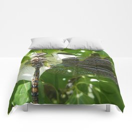 Dragonfly on dogwood Comforters