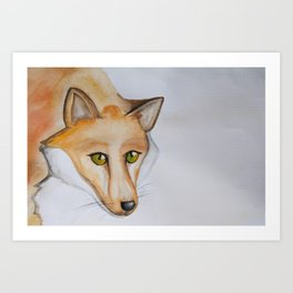 Greeneyed Fox Art Print