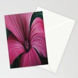 Lavatera Stationery Cards