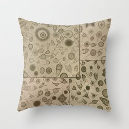 Diatom Design Throw Pillow